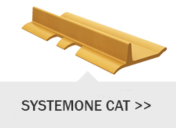 systemone cat