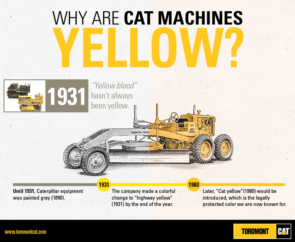 CAT_Infographics_why yellow-01